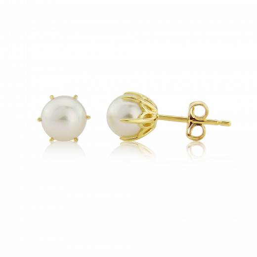 9ct Yellow Gold White Culture Pearl Stud Earrings