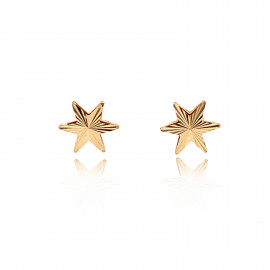 9ct Yellow Gold Star Earrings