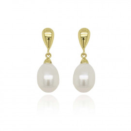 9ct Yellow Gold Culture Pearl Teardrop Earrings